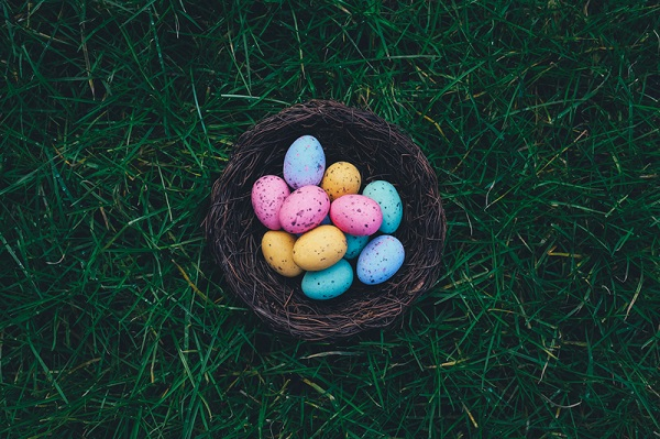 Going away for Easter? Here's how to pest proof your home